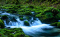 Small Waterfall And Moss-covered Rock In The Pyrenees Royalty Free Stock Photos - 55688948