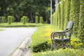 Old Bench In The Park Stock Photography - 55705212