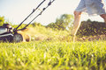 Young Man Mowing The Grass Royalty Free Stock Images - 55744189