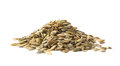 Pile Of Pumpkin Seeds Isolated Royalty Free Stock Image - 55773746