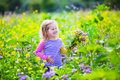 Little Girl Picking Wild Flowers In A Field Royalty Free Stock Image - 55784786