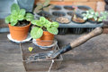 Garden Tools In The Wire Basket With Plant Pot Background Stock Images - 55794334