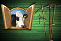 Agriculture And Livestock Concept With Open Window Stock Image - 55821941