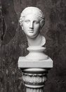 White Marble Head Of Young Woman Royalty Free Stock Photos - 55850598