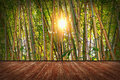 Room With Bamboo Wallpaper Stock Image - 55862441