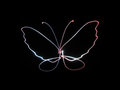 Neon Butterfly Stock Photo - 55921250