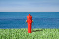 Fire Hydrant By The Sea Royalty Free Stock Image - 56022286
