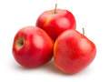 Red Apples Royalty Free Stock Images - 56032049