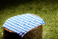 Pretty Checkered Cloth On A Tree Stump Stock Photography - 56034752