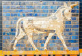 Fragment Of The Ishtar Gate Royalty Free Stock Photos - 56177448