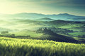 Early Spring Morning In Tuscany, Italy Royalty Free Stock Photography - 56283307