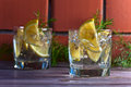 Alcoholic Drink With Lemon And Ice Stock Photography - 56313742