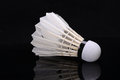 Badminton Royalty Free Stock Images - 56335089