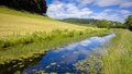 Canal Nature Reserve Stock Image - 56366971