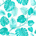Topical Palm Leaves Royalty Free Stock Image - 56383926