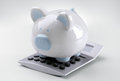 Piggy Bank With Calculator Stock Images - 56418584