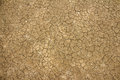 Dry Cracked Earth Texture Stock Photography - 56454002
