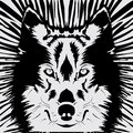 Wolf Head Royalty Free Stock Photography - 56467297