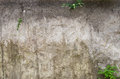 Soil Profile In Cross Section. Royalty Free Stock Photo - 56472525