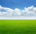 Lush Grass Field And Blue Sky With Cloud Background Royalty Free Stock Photo - 56494065