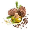 Cedar Pine Nuts And Oil Stock Images - 56510184