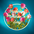 Happy Mothers Day Roses Design EPS 10 Royalty Free Stock Photos - 56515228