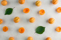 Fresh Apricot Pattern Stock Images - 56528334