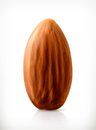Single Almond Vector Icon Royalty Free Stock Images - 56575659