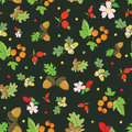 Vector Vintage Fall Berries Nuts On Dark Green Royalty Free Stock Photography - 56653187
