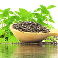 Chia Seeds In Wooden Spoon With Chia Plant And Water Reflection Stock Photo - 56709210