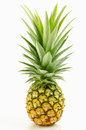 Pineapple With Leaves. Stock Photography - 56709792