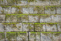 Stone Wall Pattern With Green Moss Background And Texture Royalty Free Stock Photography - 56713057