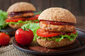 Sandwich With Chicken Burger Royalty Free Stock Photography - 56717577