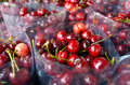Asian Cherries Stock Images - 56750224