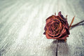 Dried Red Rose On Wood Plank Floor Royalty Free Stock Image - 56751066