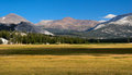 Tuolumne Meadows Royalty Free Stock Images - 56753919