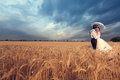 Groom Kissing The Bride In Wheat Field Stock Images - 56760504