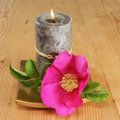 Candle And Simple Rose Royalty Free Stock Photography - 5687297