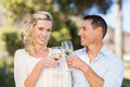 Portrait Of Smiling Standing Couple Drinking Wine And Toasting Royalty Free Stock Photography - 56811457
