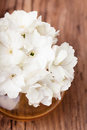 White Flowers  In A Glass Vase Royalty Free Stock Images - 56854319