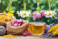 Healing Herbs, Bags With Dried Plants And Tea Cup Royalty Free Stock Image - 56864566
