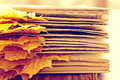 Book Pages Yellow Leaves Royalty Free Stock Photography - 56909807