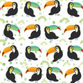 Cute Cartoon Toucan Birds Set On White Background, Seamless Pattern. Vector Royalty Free Stock Photo - 56930955