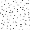 Doves And Pigeons Silhouette Seamless Pattern On White Background For Peace Concept And Wedding Design. Vector Royalty Free Stock Photos - 56931538