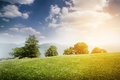 Beautiful Landscape With Green Meadow Royalty Free Stock Images - 56958679