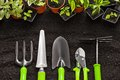 Gardening Tools And Plants Stock Images - 56983404