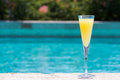 Glass Of Mimosa Royalty Free Stock Photos - 56996018