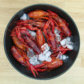 Crayfish On Ice. Royalty Free Stock Images - 57069289
