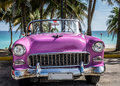 HDR Cuba Pink American Classic Car Parked Under Palms Near The Beach In Varadero Royalty Free Stock Photo - 57099485