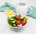 Spring Salad With Tomato, Cucumbers And Radish Stock Photography - 57102372